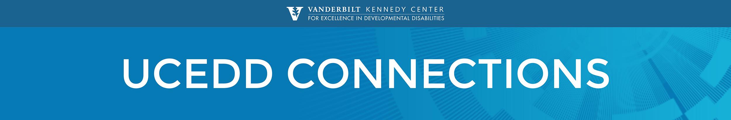 UCEDD connections blue burst banner